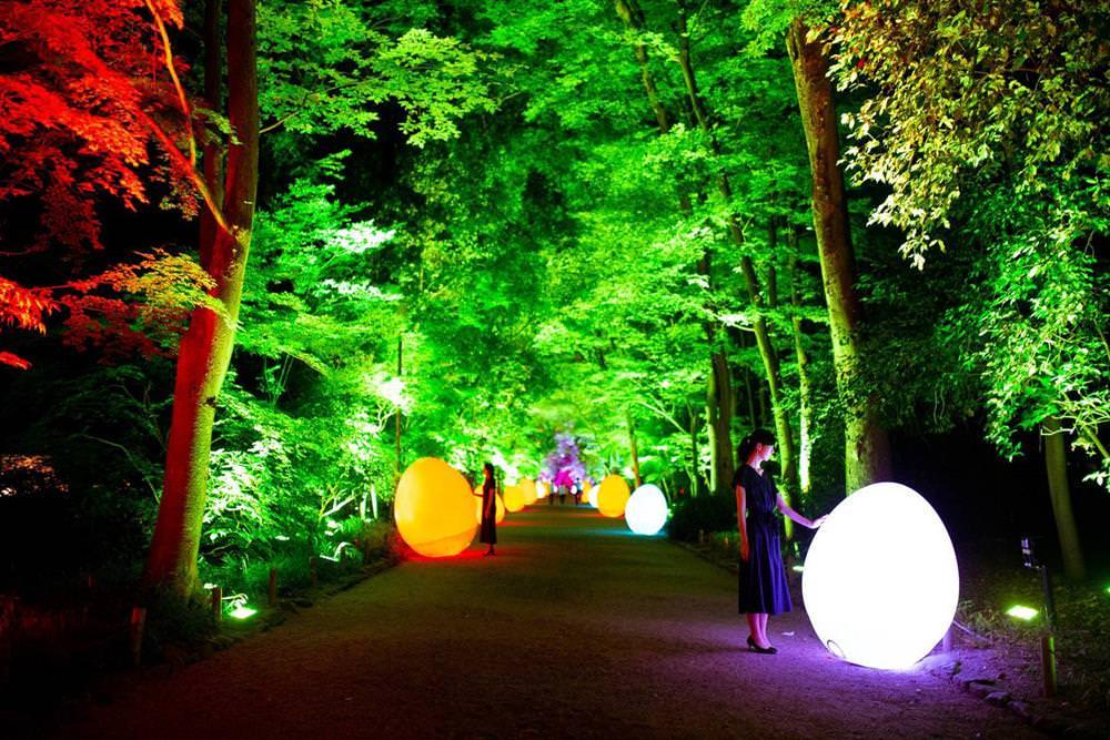 【期間限定】京都景點:2021京都下鴨神社糺の森の光の祭典 x teamLab - threeonelee.com