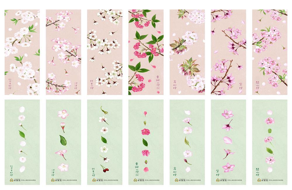 阿里山花季 櫻花書籤