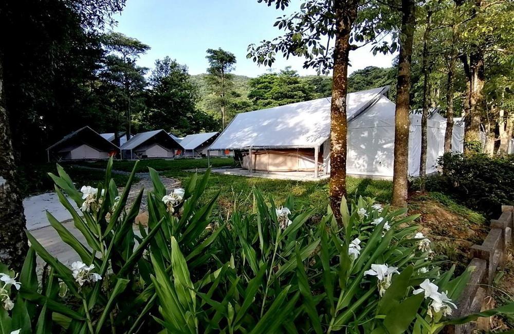 基隆暖東峽谷露營 拉波波村輕奢露營