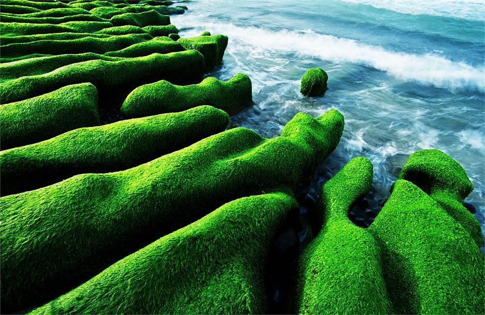 老梅綠石槽 老梅石槽交通 老梅石槽海岸步道 老梅沙灘