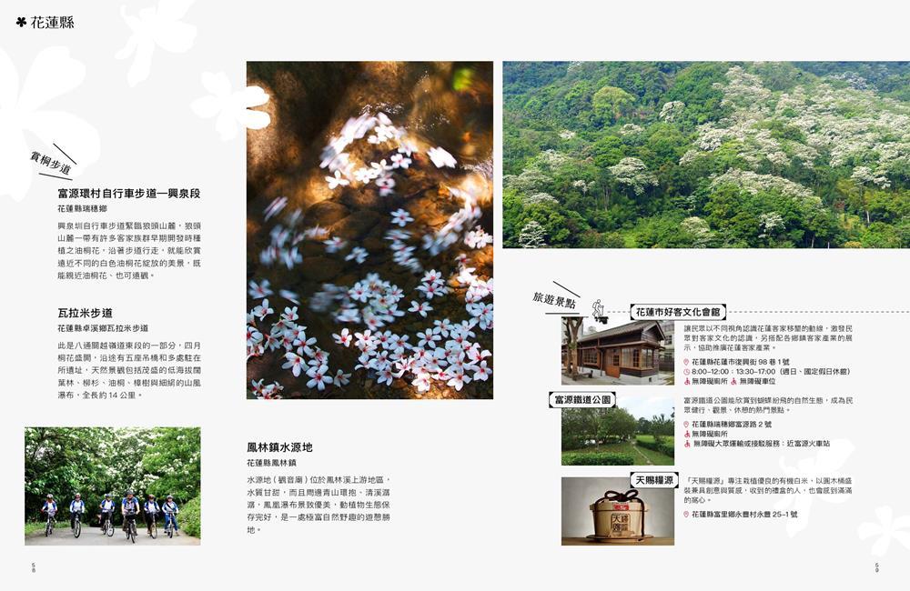 客家桐花祭,桐花季,賞桐,油桐花,賞桐步道,賞桐路線,賞桐景點