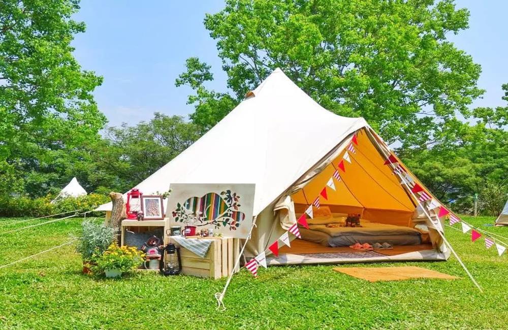 苗栗露營,黃金梯田免裝備風格露營,黃金梯田露營