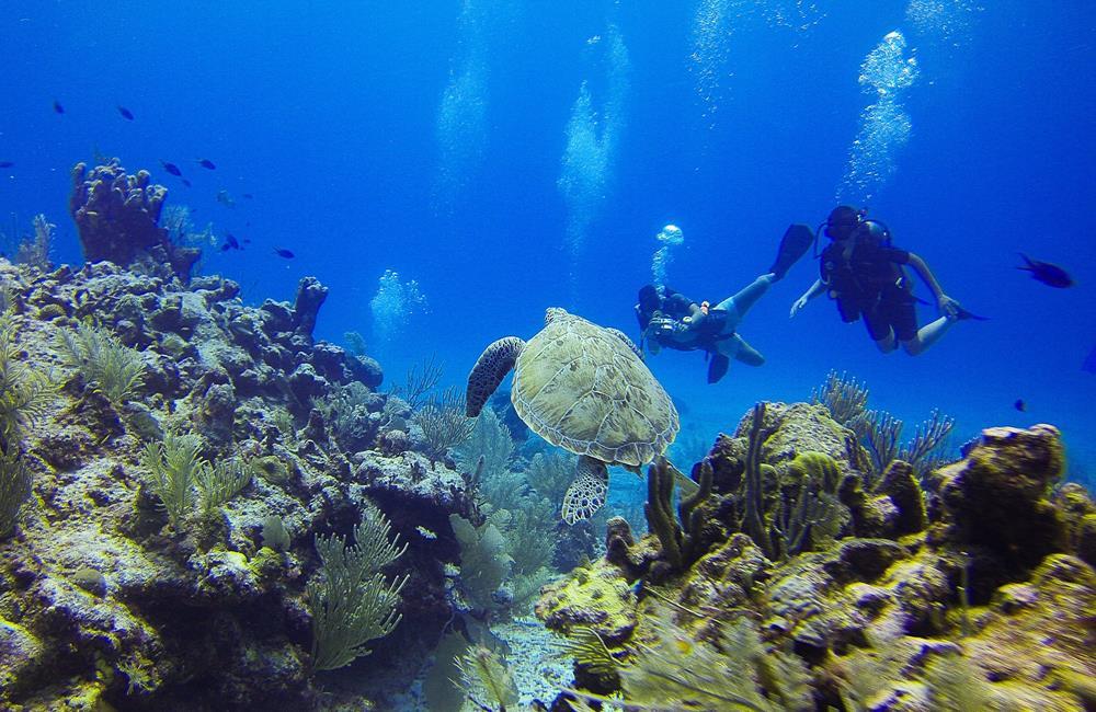 小琉球旅遊,小琉球潛水,小琉球行程,小琉球交通,小琉球景點,小琉球住宿