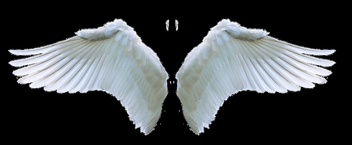防疫,身心靈療癒,占卜,彩虹卡,大天使神諭占卜卡,疫情,防疫,群聚規定,COVID19,台灣社交距離,防疫達人