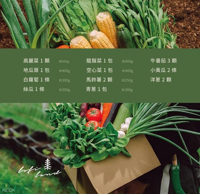 自然圈農場,熱泉野菜,蔬菜箱,防疫蔬菜箱,海鮮箱,蔬菜箱直送,蔬菜箱 宅配,蔬果 宅配,職人農作
