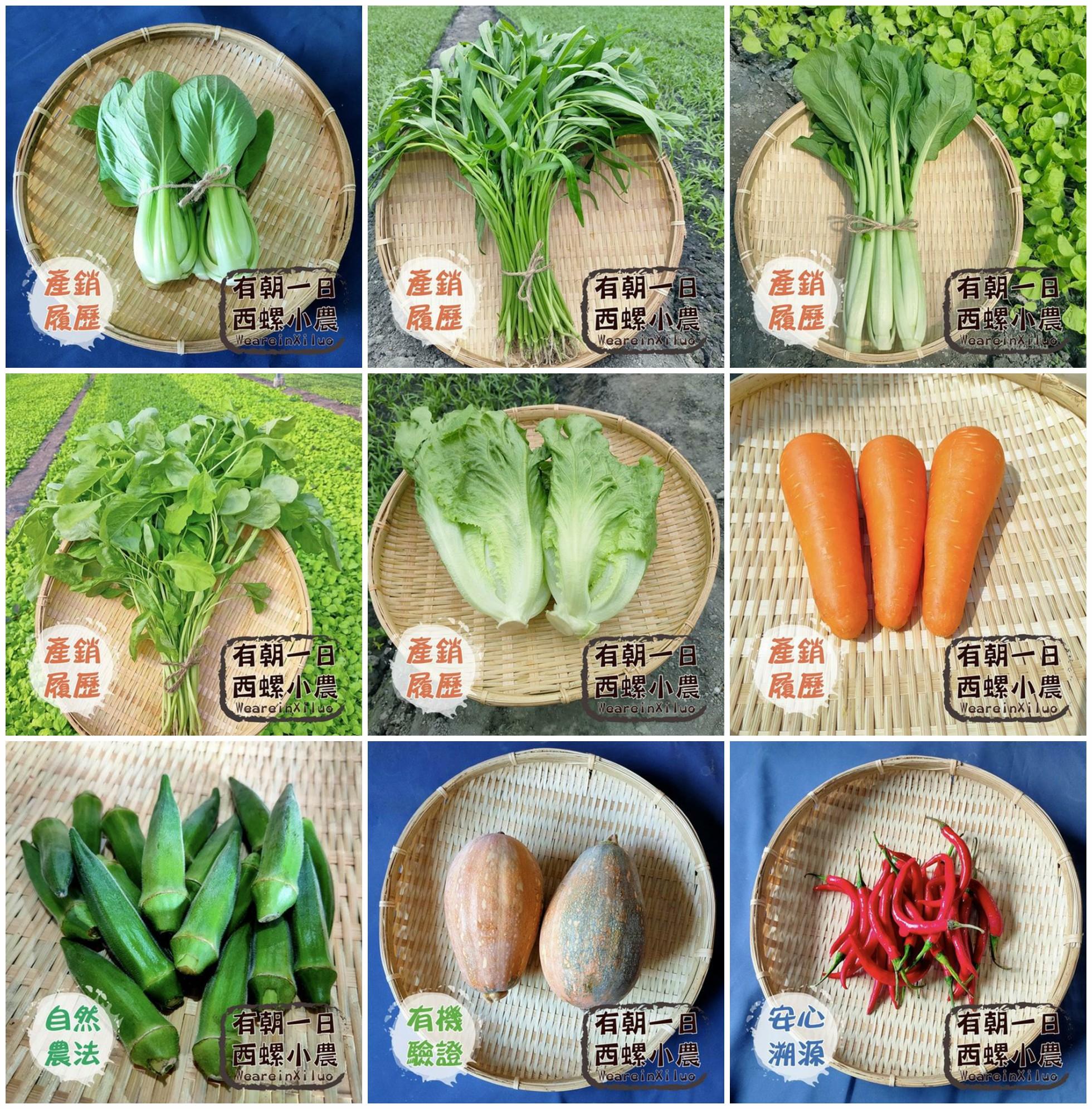西螺小農,產地直送蔬菜箱,蔬菜箱,蔬果 宅配,防疫蔬菜箱,蔬菜箱直送,蔬菜箱 宅配